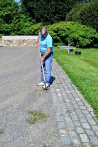 In this area, Fernando also removes any weeds growing near the brick pavers.