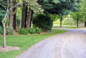 Here is another carriage road in front of my hydrangea bed - all edged perfectly.