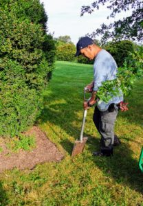 Chhiring uses a spade to cut the corner section - the starting point for the sod cutter.