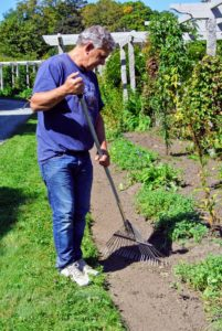 Meanwhile, back at my pergola, Fernando helps to rake the newly sodded area.