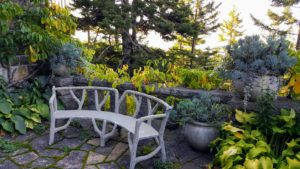 This sitting area was created a few years ago, with the faux bois bench and the Gertrude Jekyll style pots. Gertrude was an influential British garden designer, horticulturist, artist and writer.