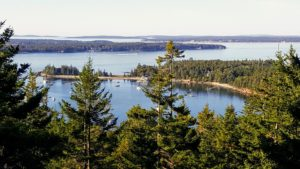 A view of Seal Harbor over the trees from my terrace. Maine's natural beauty always amazes me!