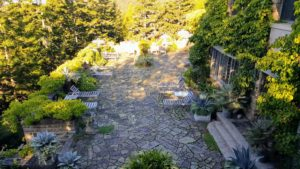 """Here is my """"ice"""" terrace before the great clearing. I love my annual weekend at Skylands when we fill the planters with beautiful agaves, alocasias, ferns, begonias, and so many more. It just brings this expansive terrace to life."""