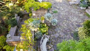 From above, the area still looks so inviting. The agaves below are waiting their turn to be removed from their planters. The vines on the retaining walls are also ancient actinidia, which are small kiwi. This great, fast-growing, sturdy vine is fruit producing.