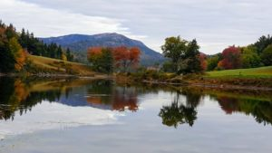 And this is Little Long Pond, located just west of the village of Seal Harbor. Cheryl captured a nice reflection of the trees in the still water.
