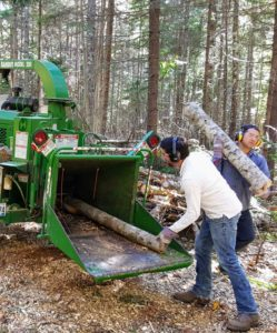 Chris and Carlos, with heavy duty gloves, goggles and ear protectors, carefully put the wood through the chipper.
