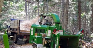 Once the wood is chipped, the chips come out through a chute and into the back of our dump truck.