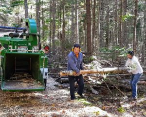 A wood chipper is a machine used for reducing tree limbs and smaller trunks. Some of the logs were quite large.