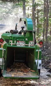 More felled trees are fed through the chipper to create wood chips.