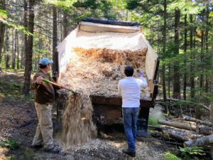 Once the dump truck is full, it is positioned on a section of bare carriage road. Rick and Chris unload some of the chips and spread it across the area.