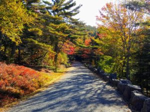 """Here is another carriage road with more of """"Rockefeller's Teeth"""" on the right edge."""