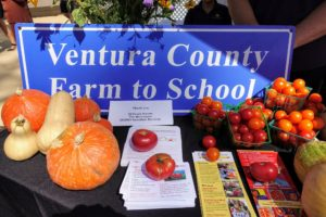 Farm to School also had a table set up. Farm to School is a program that connects schools and local farms in an effort to encourage serving healthy meals in school cafeterias and support local and regional farmers.