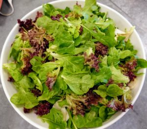 Fresh greens from the garden are washed and dried for our salad.