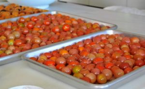 And that's it - the tomatoes are all ready for roasting.