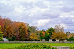 Here is more autumn color across one of my paddocks – my chicken coops are on the right.