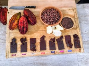 Raaka makes a variety of different artisanal bars, including hibiscus cinnamon, pink sea salt and coconut milk. If you love s'mores, Nate will offer some tips on making a cocoa nib s'more.