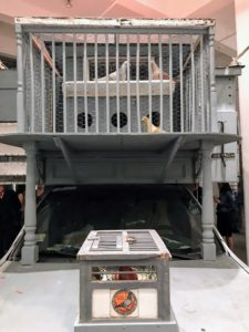 This shows the front of the vehicle - pigeons could fly in and be protected from predators.