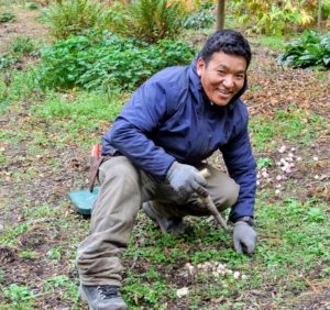 Here is Phurba planting some of the smaller bulbs in this area. Each bulb is placed in a hole about three to five inches deep. The dibber is perfect for planting these bulbs.