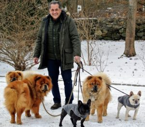 Meanwhile, Carlos takes all the dogs out for a good stroll and some fresh air. It is a cold day - temperatures are in the 20s, but the dogs love this weather, especially my Chow Chows.