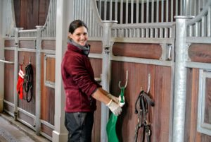 Down at my stable, Sarah hangs stockings on every stall door - even the horses are getting ready for the holidays.