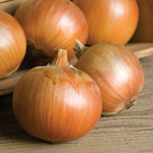 Patterson onions are medium-large, blocky bulbs with dark yellow skin and thin necks that dry quickly.