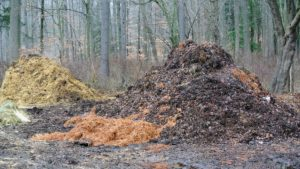 The lighter brown pile on the left is leaves. Called leaf mold after cold composting, it is produced by the fungal breakdown of shrub and tree leaves.