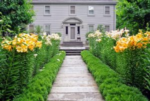 And here is the view behind my Summer House from the garden to the door. I love the walkway lined with tall lilies. The lily is another one of my favorite flowers - find out who first introduced me to the lily in my new book.