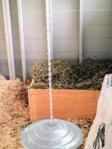 With a good amount of bedding, the nesting box is now ready.