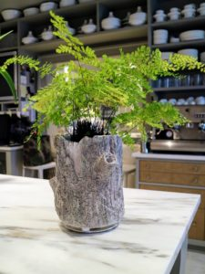 Tomorrow on QVC, I will also be selling these faux bois planters which I designed. They come in three different sizes - nine -inch, 14-inch and 19-inch tall vessels made of resin.