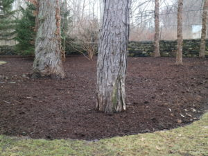 Covering the garden beds with mulch or compost will also help deter weeds. Using these materials is a wonderful way to beautify the gardens and to give back to the earth.