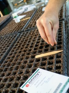 It's also a good idea to keep a record of when seeds are sown, when they germinate, and when they are transplanted. These observations will help organize a schedule for the following year.