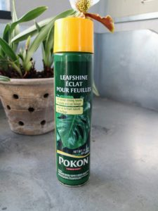 He uses Pokon Leaf Shine which is made with vegetable oils and is easy to spray. Products like this are easy to find at garden supply stores.