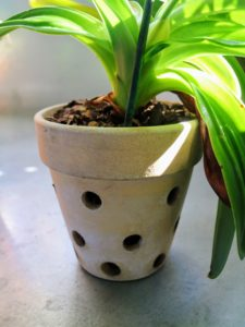 Orchid pots with holes on the sides are specially designed to allow air to circulate through the loose medium and around the leaves and roots.