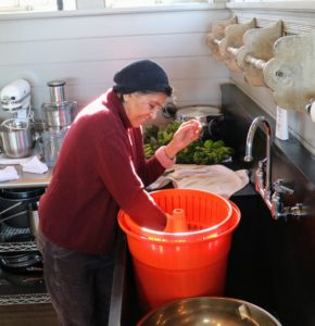 Laura then removes the spinach from the basket. All the water from the spinach has drained out of the basket and into the larger receptacle.