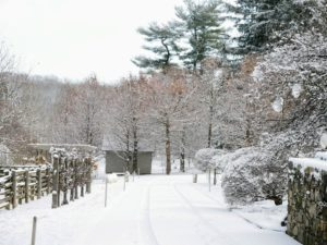 It's so beautiful to wake up to a white Christmas here at my farm - everything looks so pretty looking down the carriage road from my Winter House.