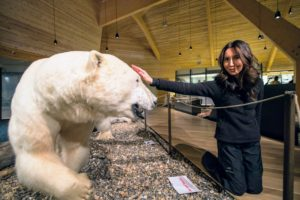 Here's Kira standing next to a polar bear - don't worry, she is not touching it. Polar bears are the iconic symbol of Svalbard. According to the Norwegian Polar Institute, there are an estimated three-thousand polar bears in the Barents Sea area.The animals are protected and people moving outside the settlements are required to have appropriate scare devices to ward off any attacks. (Photo by Michael Poliza)