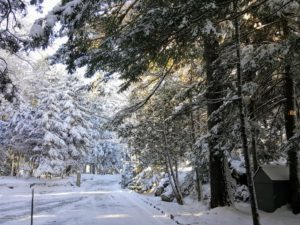Here is a view coming in the back driveway leading to the back porch entrance. Skylands is beautiful in every season, but under winter's glistening snow, it is even more magical.