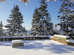 Here is another view of the snow covered terrace looking out over Seal Harbor. Under the plywood box on the right is a long planter carved from a single block of granite. I purchased it from Trade Secrets in 2013.