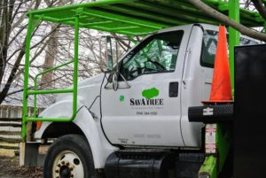 I use SavATree for tree care services at all my homes. When dealing with high tree trimming and other challenging jobs, I call my friend, Ralph Robbins, founder of SavATree. He and his team always do an excellent job. http://www.savatree.com/