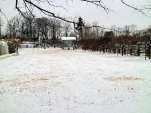 "Once again, the farm is covered with a new layer of glistening snow. This is my expansive ""party lawn"", where I love to set-up games for guests during summer parties. At the end is the corn crib, which has been here since I purchased the property."