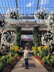 Longwood Gardens is open to visitors year-round and consists of nearly 1,100-acres of gardens, woodlands and meadows. I am standing in the Center Walk, which features six large white Phalaenopsis orbs each measuring five-feet in diameter.