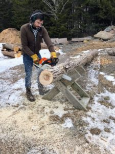 "Chris cut newly felled tree logs for this process. Oyster mushrooms prefer soft hardwoods like aspen, poplars, willow and many other ""weed"" trees. Chris looked for logs with diameters ranging from six to 12 inches. He also ensures the cuts are smooth and level so the sections can be stacked."