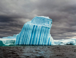 These icebergs are filled with thousands of intricately carved spires, arches, and blocks. Icebergs that have been formed from older glaciers have little internal air or reflective surfaces, so when the sun hits the iceberg, it is absorbed, not reflected, giving it a blue or blue-green color.