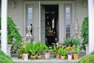 Outside my Winter House, houseplants wait to be brought in to decorate various tables for Easter. I keep all my houseplants in the main greenhouse, so they can be cared for properly, but I love bringing them indoors for special occasions - they add life to any room.