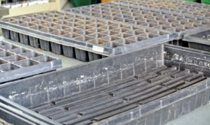 Seed starting trays are available in all sizes and formations. Select the right kind of tray based on the size of the seeds.