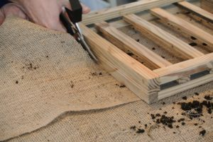 Ryan uses the same kind of wooden boards used to mount the rhipsalis earlier in the week. For this project, he starts by cutting a piece of burlap the same size as the back of the frame.