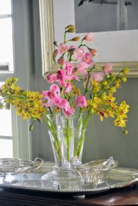 Here is a gorgeous vase of cut Cymbidium orchids - they add such pretty color to the room with their vibrant pinks and yellows.