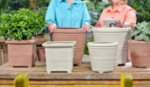 "I love these lightweight 12-inch vessels, and they come in two colors - gray and terracotta. And because of the clever ""false bottom"" feature, they are so easy to move around."