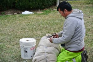 And Chhewang ties up and labels each roll of burlap before it also gets stored away for the warm season.