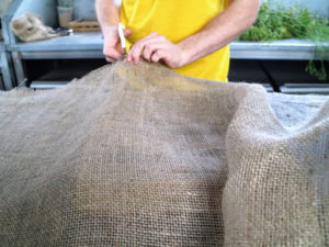 Back in the head house, Ryan cuts a piece of burlap to fit the frame and the rhipsalis.